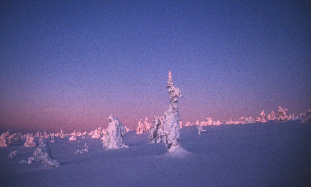 Lappland_4