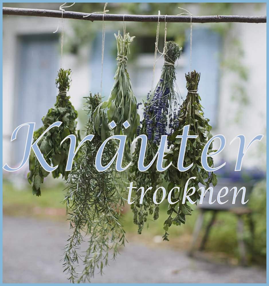 Kräuter-1-