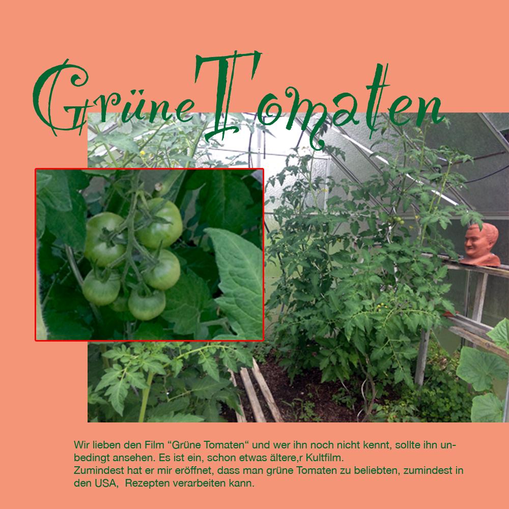 gruene Tomaten-1